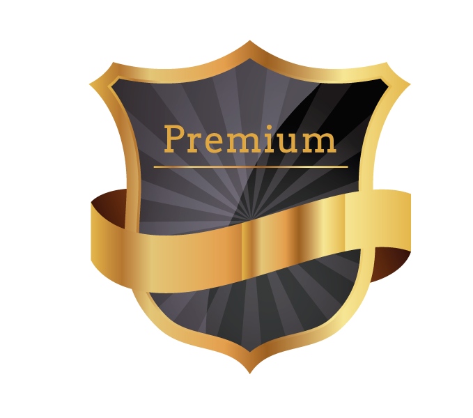 Correct Score - Premium offer / SoccerFix24.com